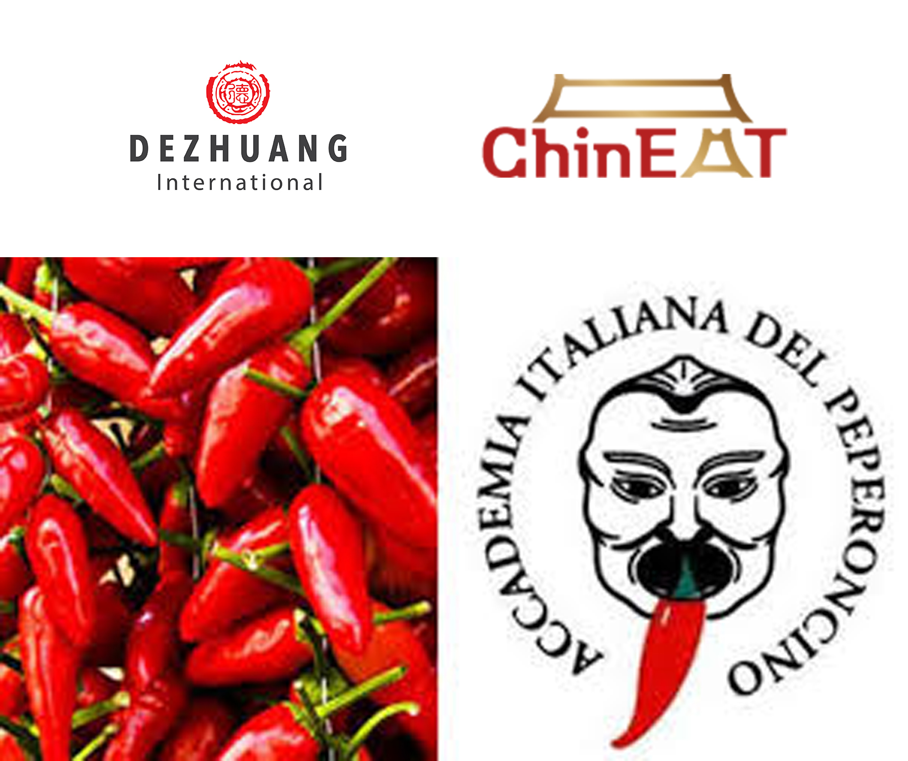DeZhuang International Team at 25th Peperoncino Festival in Diamante